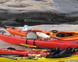 Trip Options to go sea kayaking